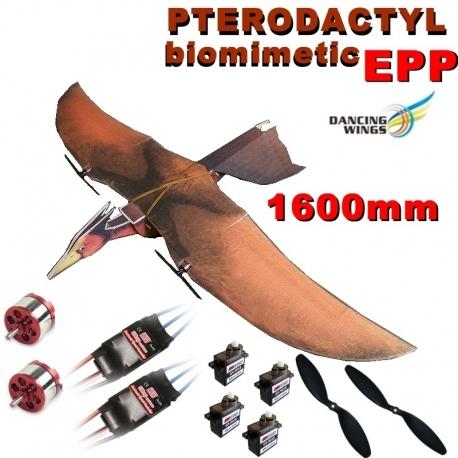 KIT PTERODACTYLE  1600mm EN  EPP DANCING WINGS COMBO 2