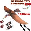 KIT PTERODACTYLE  1600mm EN  EPP DANCING WINGS COMBO 1