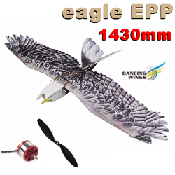 KIT AIGLE 1430mm EN  EPP DANCING WINGS COMBO 1